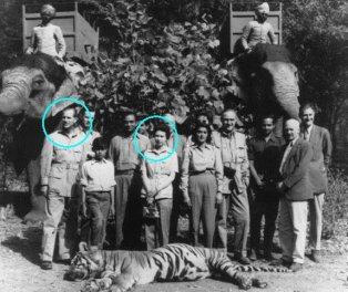 Tigres Reyes ingleses.jpg