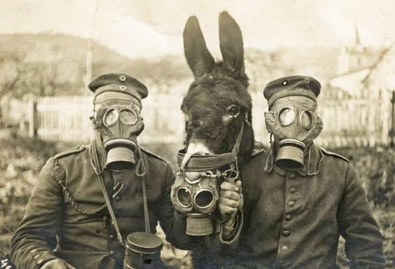 IGM-soldados-alemanes